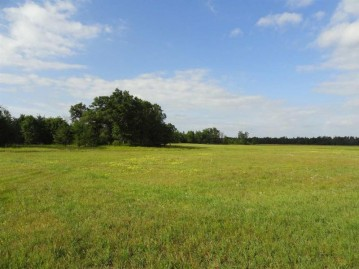 197 acres Evergreen Avenue, Wisconsin Rapids, WI 54494