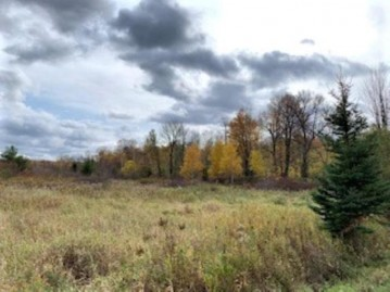 Lot 1 Hines Road, Ringle, WI 54471