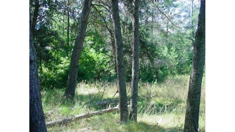 On Lake Mildred Rd Newbold, WI 54501 by Coldwell Banker Mulleady-Rhldr $17,000