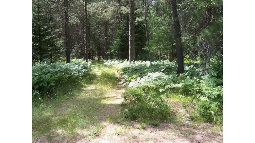 On Duck Lake Rd E Lot Watersmeet, MI 49969 by Century 21 Burkett - Lol $79,000