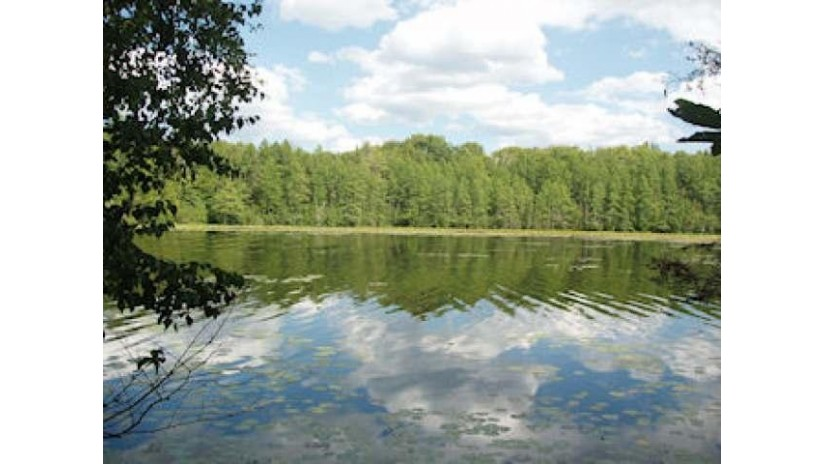On Chickadee Tr E Sherman, WI 54552 by Birchland Realty, Inc - Park Falls $84,900