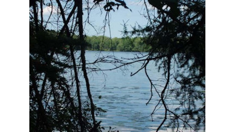 On Chickadee Tr E Sherman, WI 54552 by Birchland Realty, Inc - Park Falls $79,900