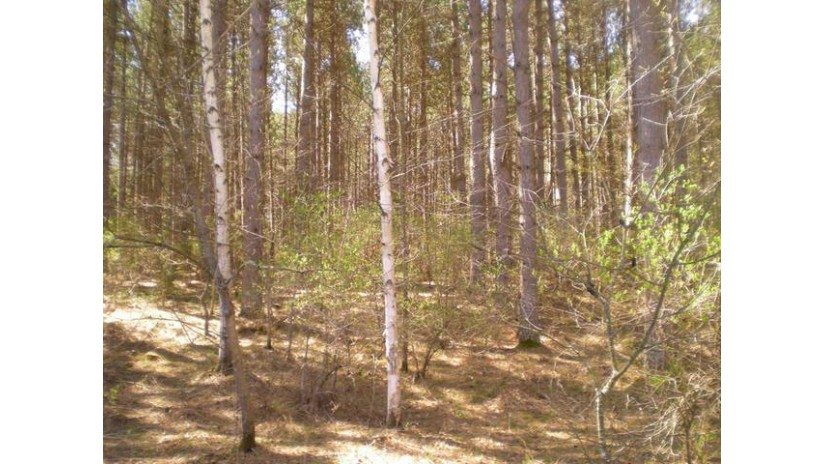 Close Burnt Pine Rd Lakewood, WI 54138 by Tebo Lakewood Realty $10,900
