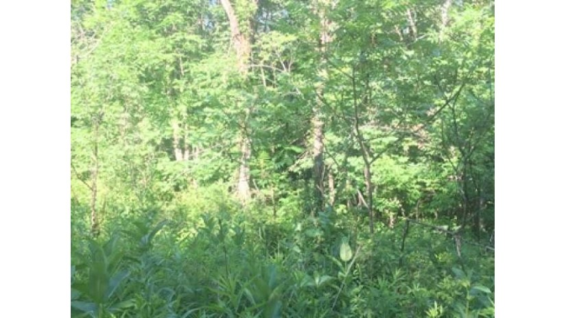 On Townsite Rd Winchester, WI 54557 by Century 21 Pierce Realty - Mw $24,000