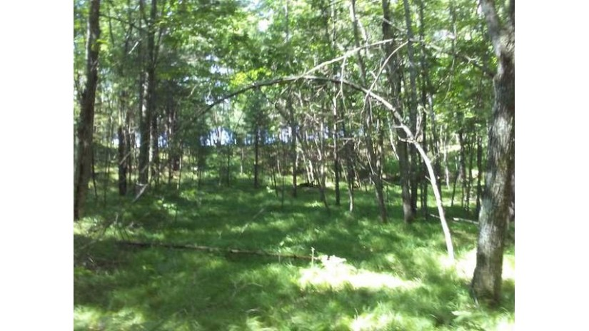 Lot 3 Cold Water Dr Plum Lake, WI 54560 by First Weber - Minocqua $69,000