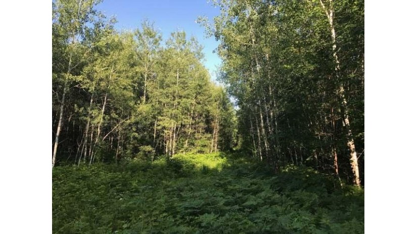 105 Ac. Pine Lake Rd Minocqua, WI 54564 by Lakeland Realty $152,000