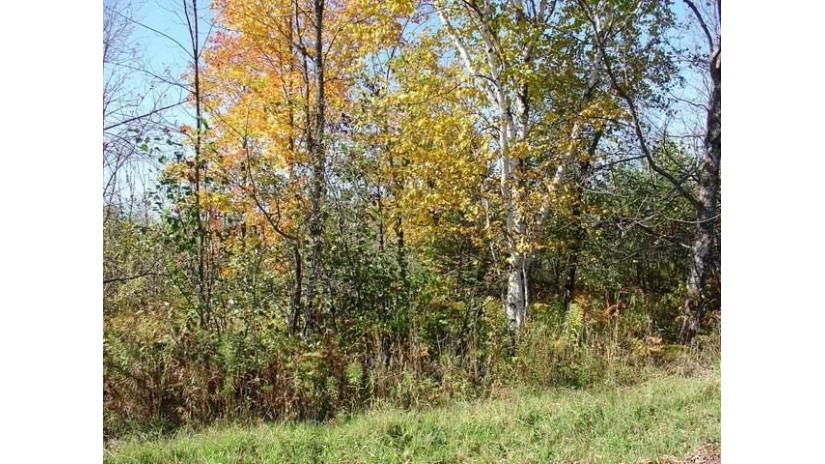 Off Lookout Ln Ironwood, MI 49938 by First Weber - Bessemer $39,500
