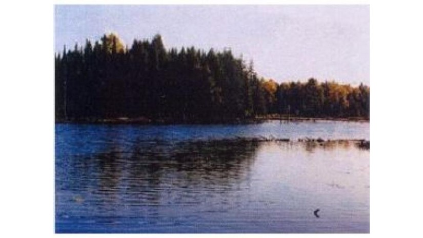 On Channel Rd Watersmeet, MI 49969 by Eliason Realty Of Land O Lakes $149,900