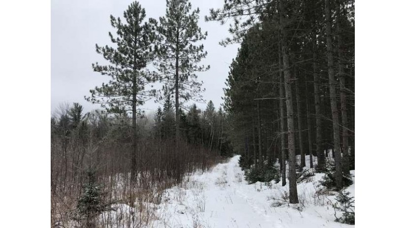 320 Ac. Hwy 107 Rock Falls, WI 54487 by Lakeland Realty $317,900