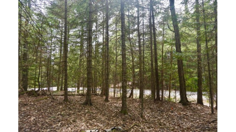 On Pine Tree Ln Lot St. Germain, WI 54558 by Century 21 Burkett - Wall St. $39,900