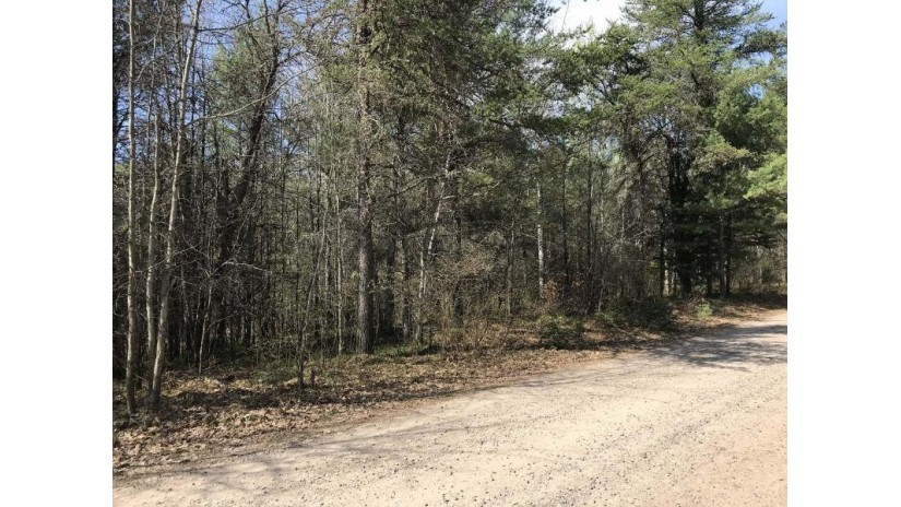 On Snowshoe Ln Lot 4 Land O Lakes, WI 54540 by Eliason Realty Of Land O Lakes $16,500