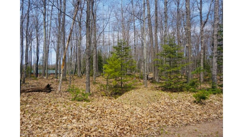 On Birch Tree Ln Lot 52 St. Germain, WI 54558 by Century 21 Burkett - Wall St. $40,900
