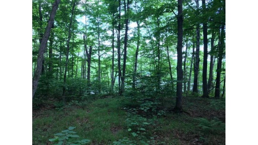 Lot 7 Little Long Lake Ln Freedom, WI 54566 by Lakeland Realty $61,500