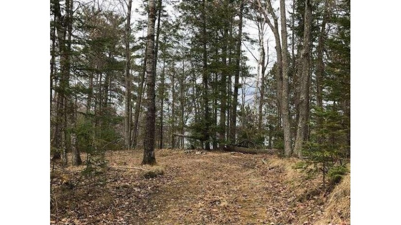 0 Norway Point Hayward, WI 54843 by Woodland Developments & Realty $139,000