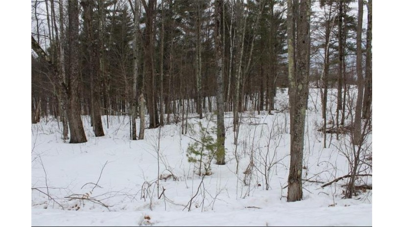 Lot 3 Hidden Woods Dr Drive Hayward, WI 54843 by C21 Woods To Water $16,900