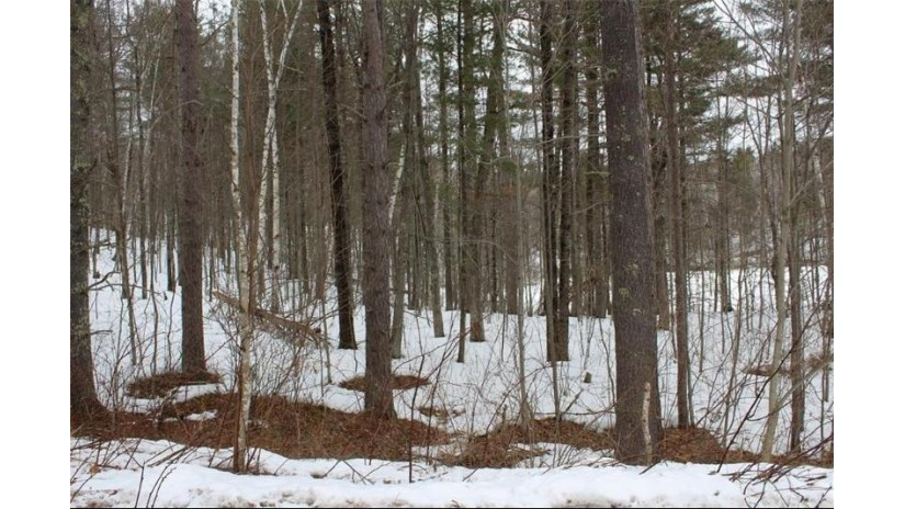 Lot 8 Hidden Woods Dr Drive Hayward, WI 54843 by C21 Woods To Water $16,900