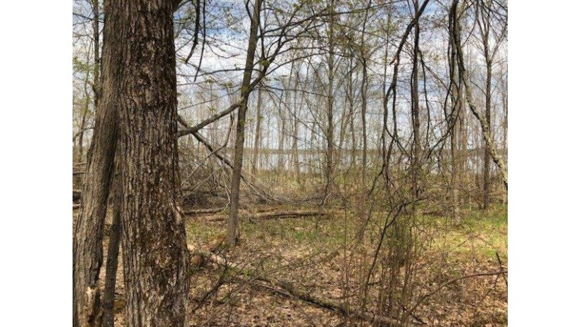 0 Sand Lake Road Stone Lake, WI 54876 by Area North Realty Inc $279,000