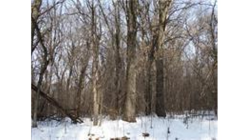 0 Hamilton Falls Rd Road Stanley, WI 55487 by Cb Brenizer/Eau Claire $24,900