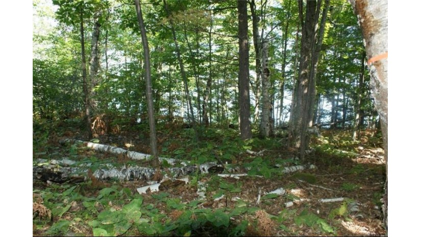 83050 Lot 3 State Hwy 13 Bayfield, WI 54814 by Edina Realty, Inc. - Spooner $275,000