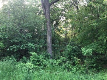 Lot 23 124th St Street, Chippewa Falls, WI 54729