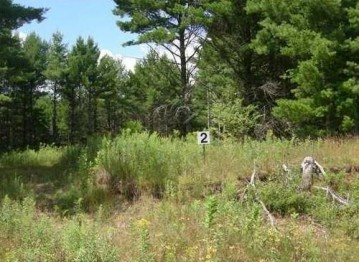 Lot 2 Dylan Lane, Cable, WI 54821