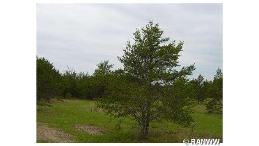 0 Brodi Lane Hayward, WI 54843 by Area North Realty Inc $19,500