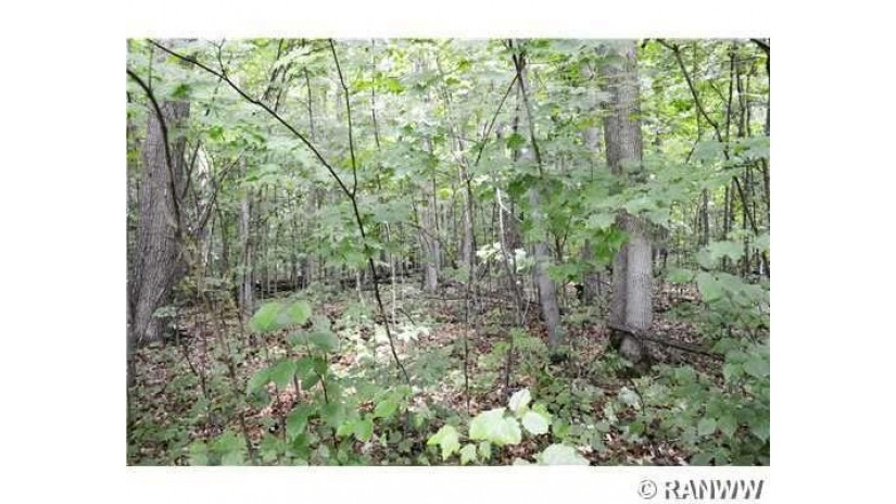 0 20 5/8 Rice Lake, WI 54868 by Team Realty $24,900