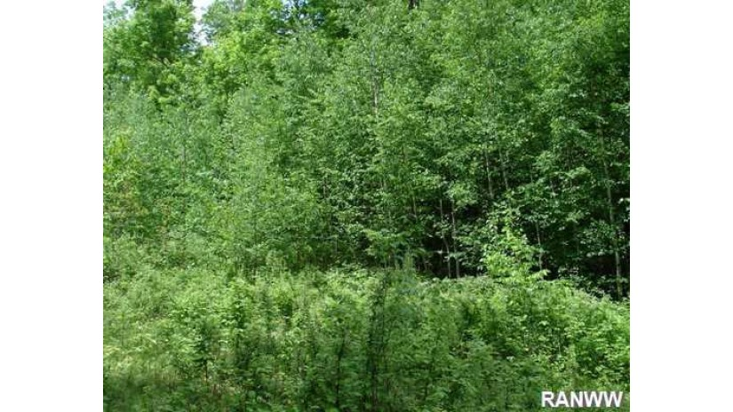 Lot 1 Hawk Haven Drive Hayward, WI 54843 by Edina Realty, Inc. - Hayward $32,900