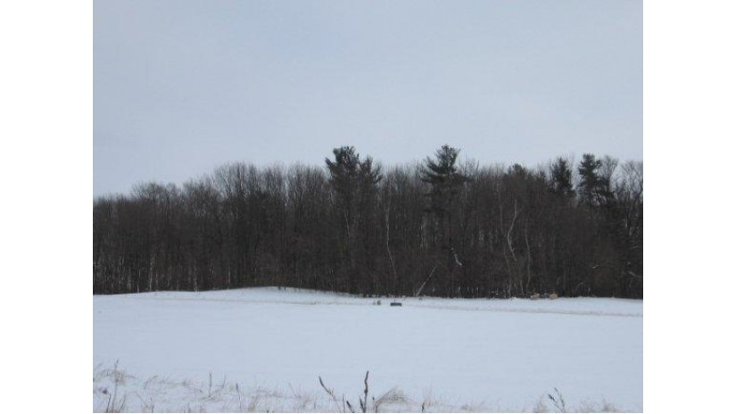 E9560 SCENIC VIEW Court Caledonia, WI 54940 by Coldwell Banker The Real Estate Group $34,900