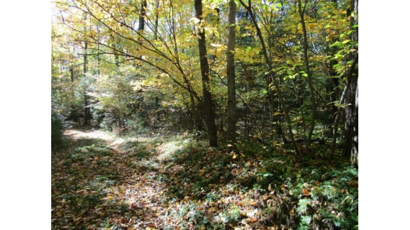 MILL POND LN Big Falls, WI 54926 by Shambeau and Thern Real Estate, LLC $97,000