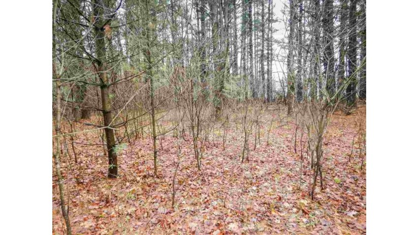 EKLUND Street Peshtigo, WI 54157 by Executive Realty $67,900