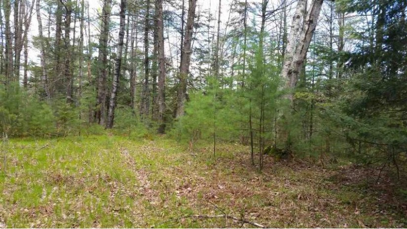MENOMINEE SHORES Drive Wagner, WI 54177-8575 by Boss Realty, LLC $28,000