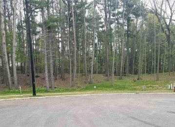 WOODLAND RIDGE, Howard, WI 54313