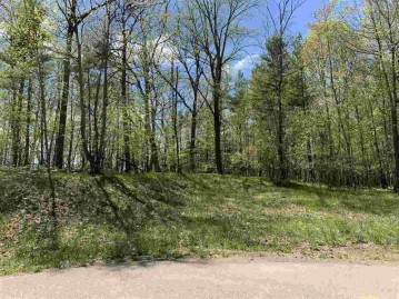 Oak View Drive, Wescott, WI 54166-0000