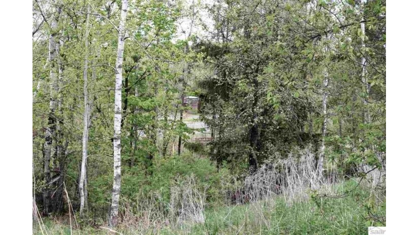 County Hwy A Iron River, WI 54847 by North Star, Realtors $14,500