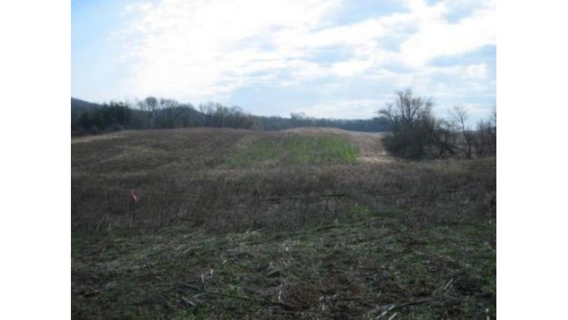 Lot 1 Flyhawk Ln Roxbury, WI 53583 by Bunbury & Assoc, Realtors $65,900