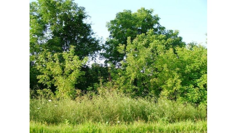 Lot 10 Honeycut Ave Tomah, WI 54660 by Re/Max Hometown Real Estate $23,000