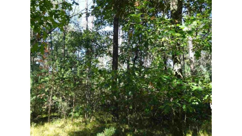 Lot 175 Timber Tr Germantown, WI 53950 by Castle Rock Realty Llc $8,800