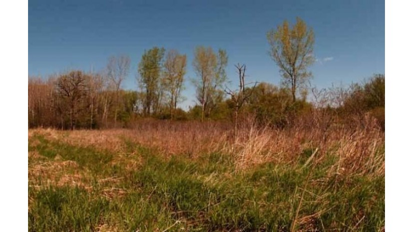 Lot 24 Bluestem Tr Deforest, WI 53532 by First Weber Inc $184,900