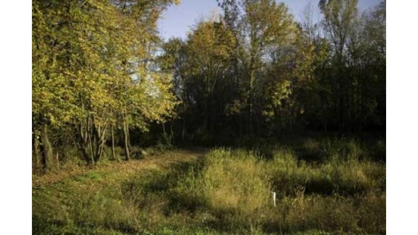 Lot 25 Indigo Dr Deforest, WI 53532 by First Weber Inc $184,900