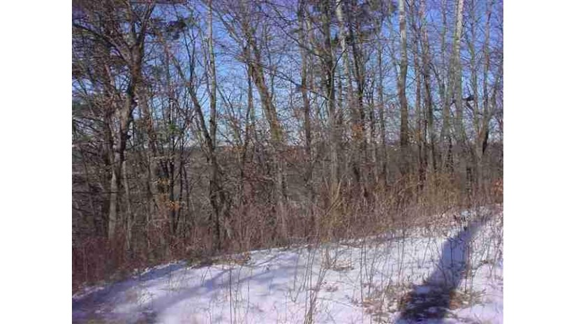 L2 County Road A/Hillside Dr Lake Delton, WI 53965 by First Weber Inc $1,250,000