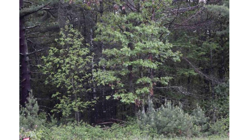 L26 19th Pass Strongs Prairie, WI 54613 by Castle Rock Realty Llc $129,900