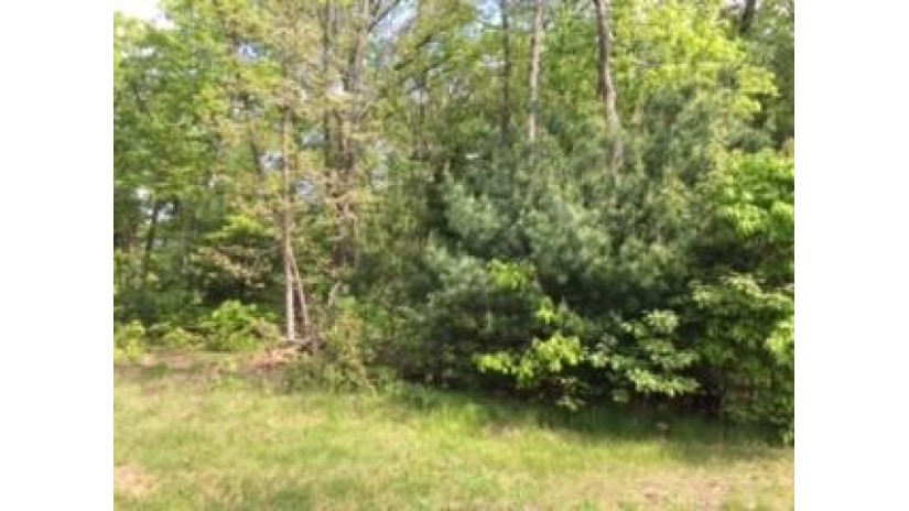 321 Dogwood Ln Lake Delton, WI 53940 by Cold Water Realty, Llc $49,000
