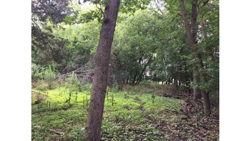 L2 Hillman Rd Delton, WI 53965 by First Weber Inc $80,000