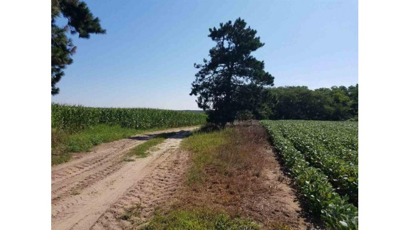 112ac County Road A Oxford, WI 53952 by Daggett Realty $595,000