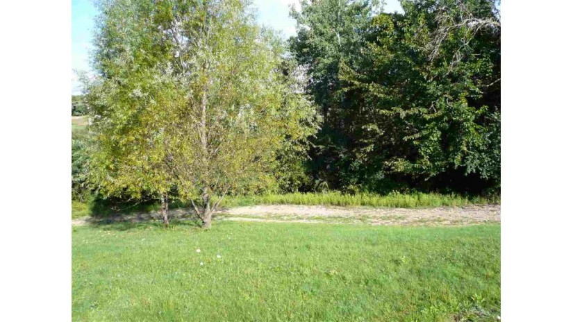 L3 County Road W Christiana, WI 53531 by Badger Realty Group $60,000