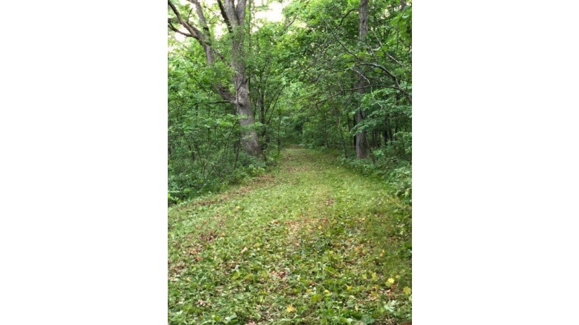 19.5 Ac County Road A Moscow, WI 53544 by First Weber Inc $150,000