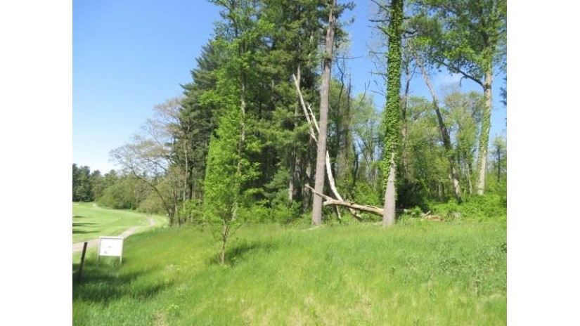 L32 Eagles Roost Ln Brooklyn, WI 54941 by Special Properties $89,900
