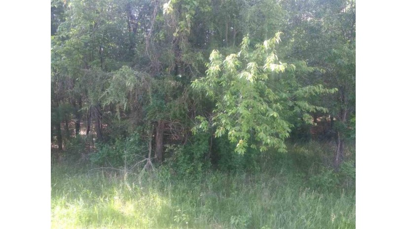 L64 Deerpath Dr Mecan, WI 53949 by Coldwell Banker Cotter Realty $26,900