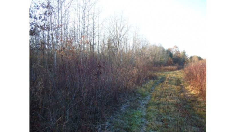 4.92 Ac Hwy 16 Newport, WI 53965 by Wisconsin Dells Realty $39,900